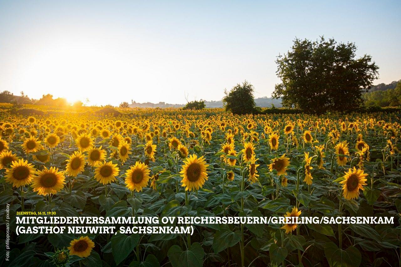 Mitgliederversammlung OV Reichersbeuern-Greiling-Sachsenkam